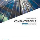 2020 Company Profile